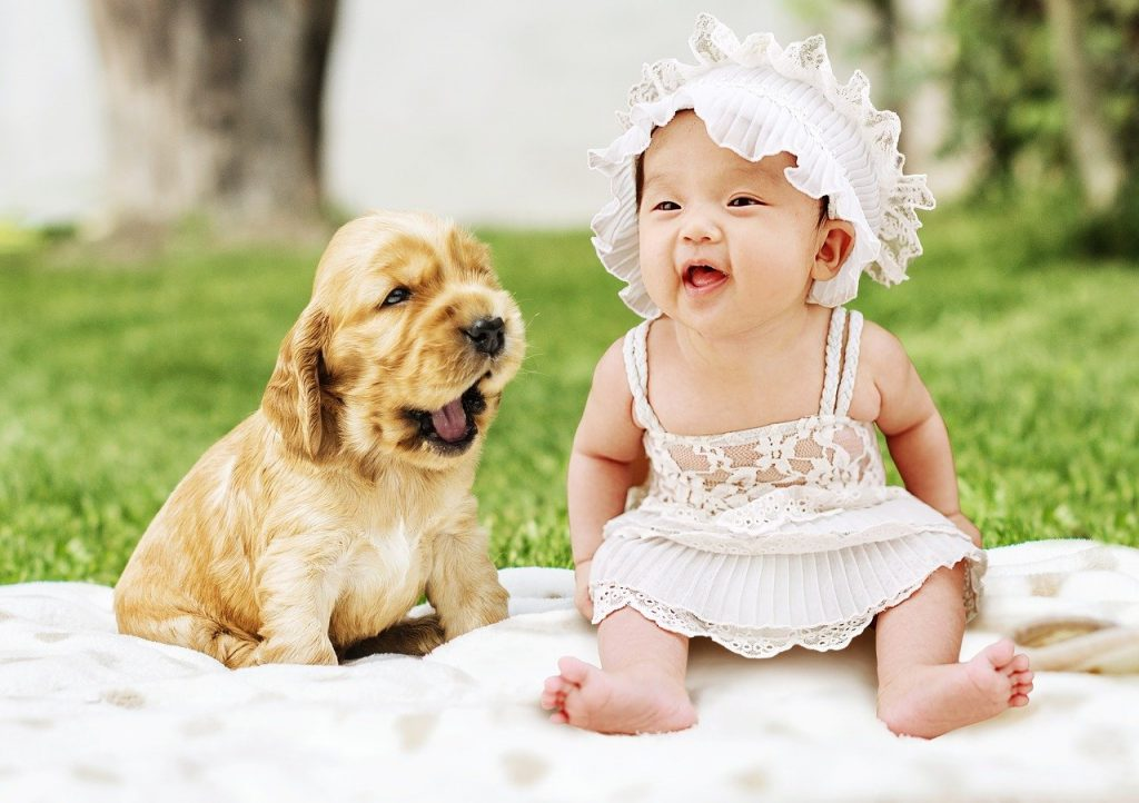 best dog for scared child